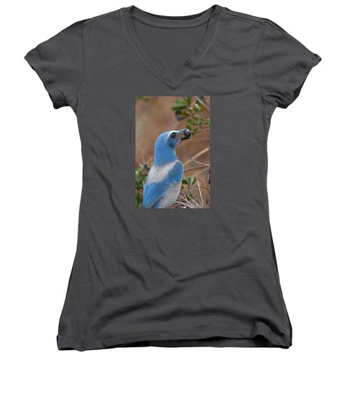 Women's V-Neck T-Shirt (Junior Cut) featuring the photograph Scrub Jay With Acorn by Paul Rebmann