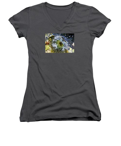 Sea Anemone Women's V-Neck T-Shirt