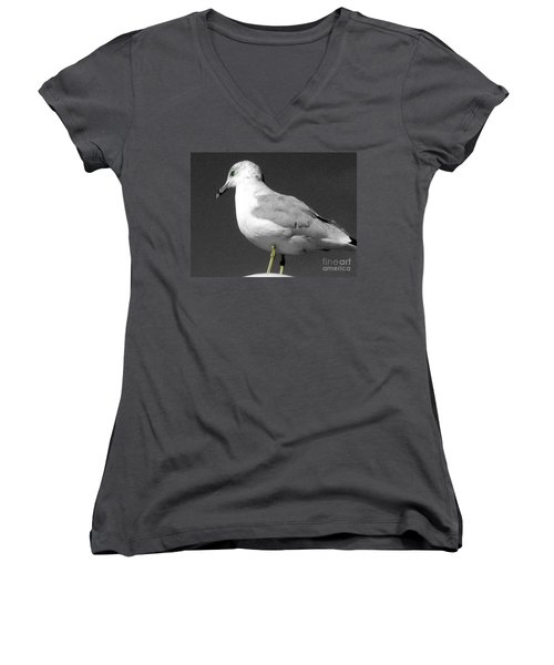 Women's V-Neck T-Shirt (Junior Cut) featuring the photograph Seagull In Black And White by Nina Silver