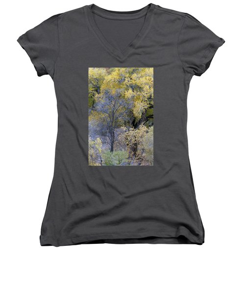 Sedona Fall Color Women's V-Neck (Athletic Fit)