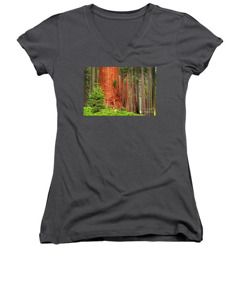 Sequoias Women's V-Neck