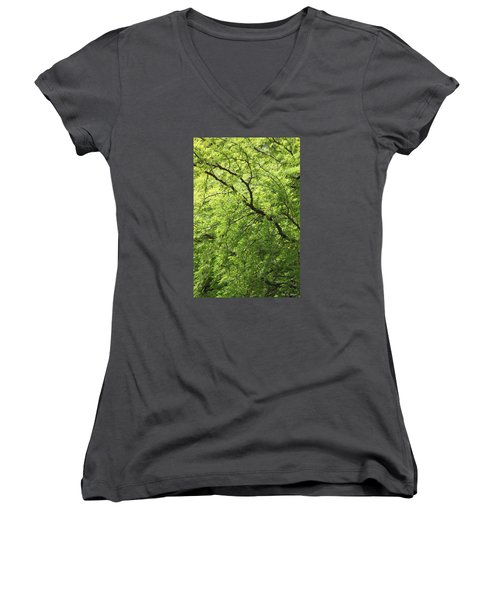 Shades Of Green Women's V-Neck T-Shirt (Junior Cut) by Amy Gallagher