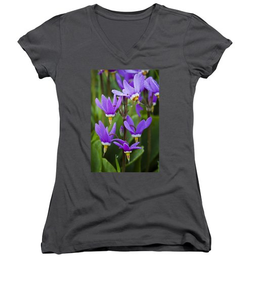 Women's V-Neck T-Shirt (Junior Cut) featuring the photograph Shooting Stars by Sonya Lang