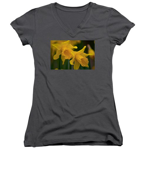 Shout Out Of Spring Women's V-Neck T-Shirt (Junior Cut) by Tikvah's Hope