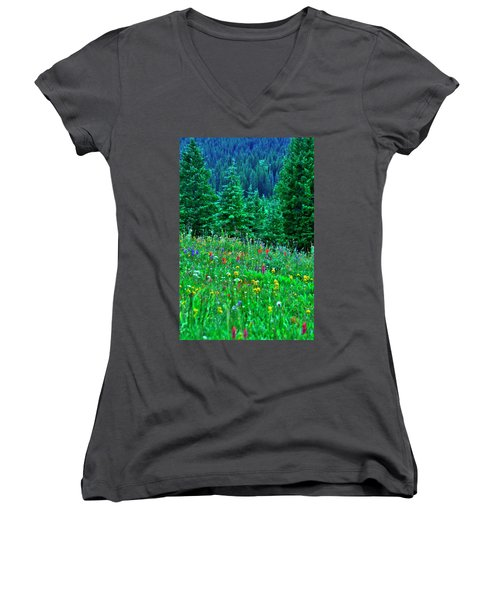 Women's V-Neck T-Shirt (Junior Cut) featuring the photograph Shrine Pass Wildflowers by Jeremy Rhoades