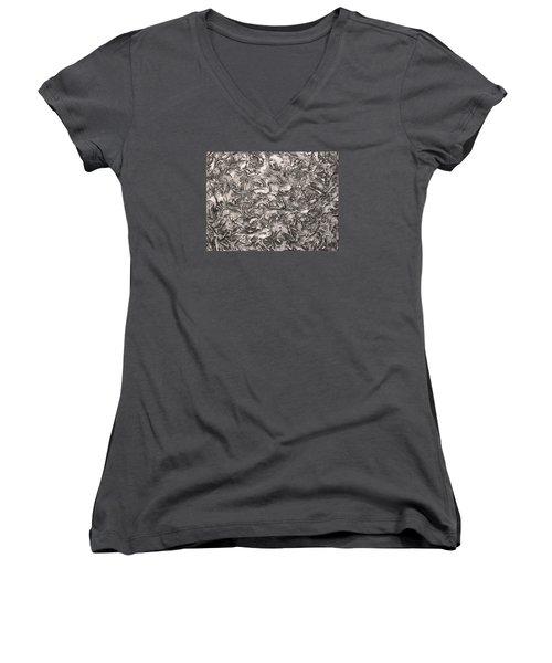 Silver Streak Women's V-Neck T-Shirt