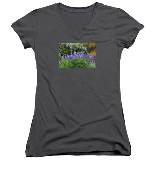 Women's V-Neck T-Shirt (Junior Cut) featuring the photograph Silvery Lupine Black Canyon Colorado by Janice Rae Pariza