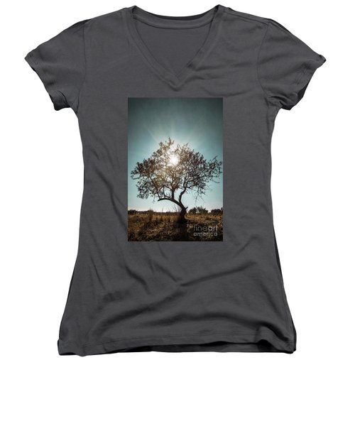 Single Tree Women's V-Neck T-Shirt (Junior Cut) by Carlos Caetano