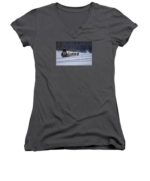 Women's V-Neck T-Shirt (Junior Cut) featuring the photograph Sled Dog  by Duncan Selby