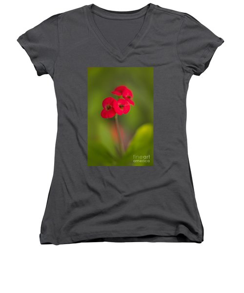 Small Red Flowers With Blurry Background Women's V-Neck