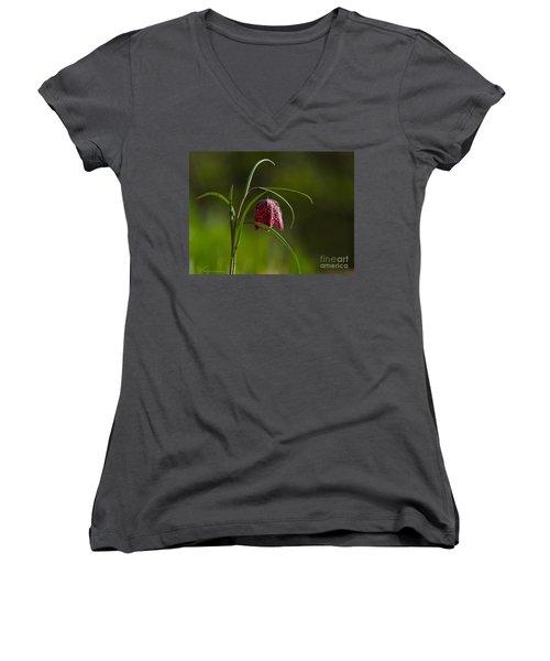 Snake's Head Women's V-Neck T-Shirt