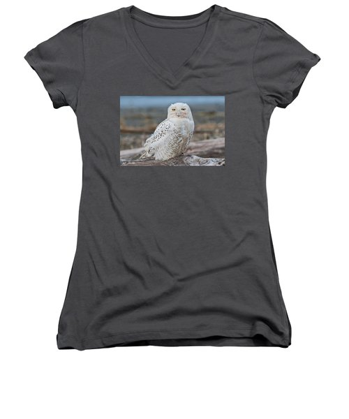 Snowy Owl Watching From A Driftwood Perch Women's V-Neck