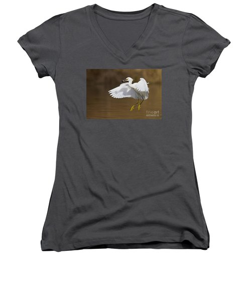 Snowy With A Fish Women's V-Neck T-Shirt