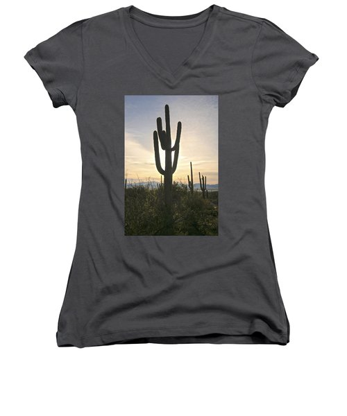 Sonoran Desert View Women's V-Neck (Athletic Fit)