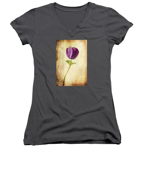 Sophisticated Lady Women's V-Neck T-Shirt