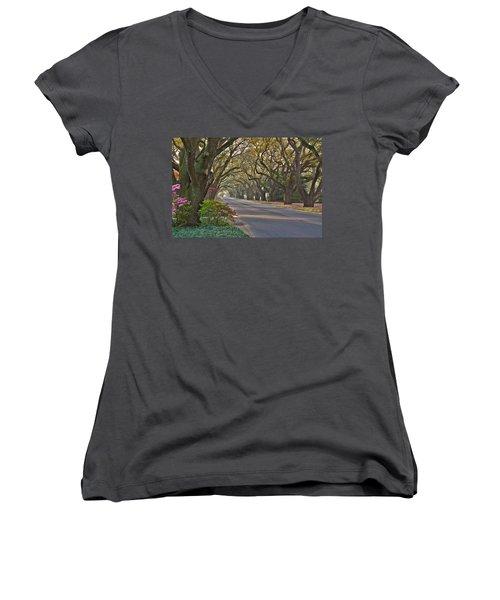 South Boundary In Spring Women's V-Neck T-Shirt (Junior Cut)
