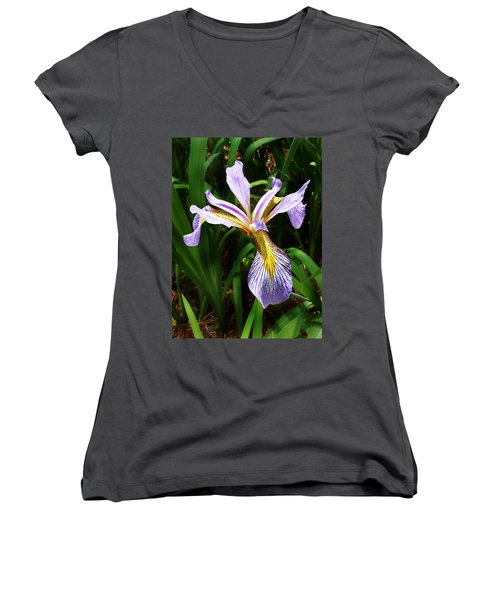 Southern Blue Flag Iris Women's V-Neck (Athletic Fit)