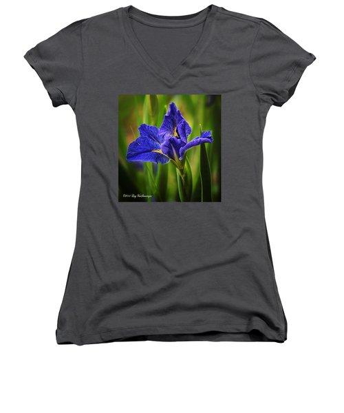 Spring Blue Iris Women's V-Neck
