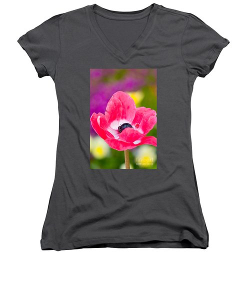 Spring Colors   Women's V-Neck (Athletic Fit)