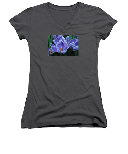 Women's V-Neck T-Shirt (Junior Cut) featuring the photograph Spring Crocus by Julie Andel