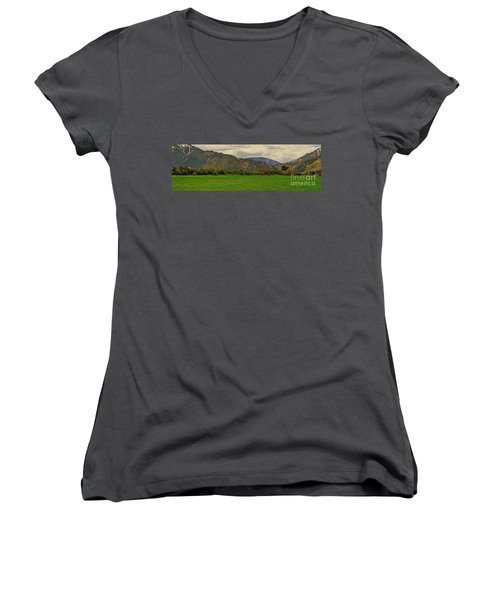Spring Dandylions Women's V-Neck (Athletic Fit)