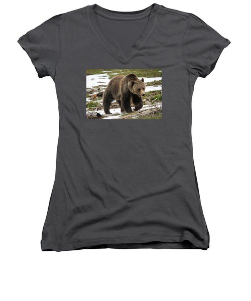 Women's V-Neck T-Shirt (Junior Cut) featuring the photograph Spring Grizzly Bear by Jack Bell