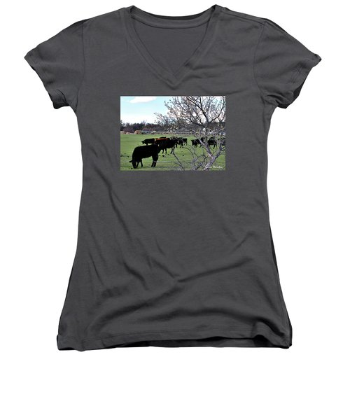 Spring In The Hay Meadow Women's V-Neck (Athletic Fit)