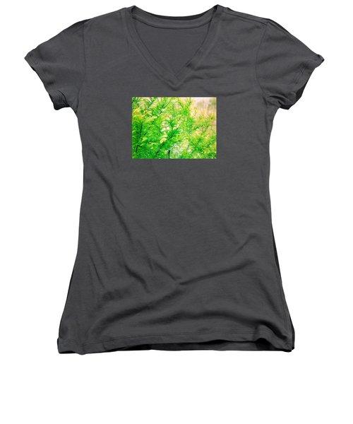 Spring Cypress Beauty Women's V-Neck T-Shirt (Junior Cut) by Belinda Lee