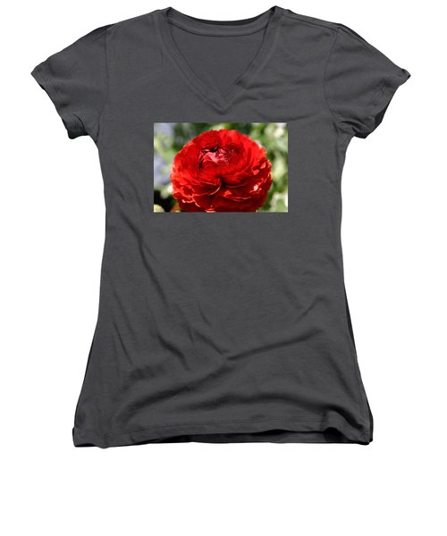 Spring Scarlet Double Begonia Women's V-Neck T-Shirt