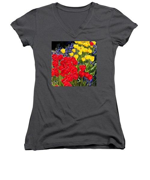 Spring Sunshine Women's V-Neck T-Shirt (Junior Cut)
