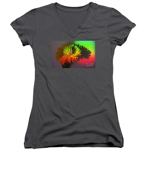 Spring Through A Rainbow Women's V-Neck T-Shirt