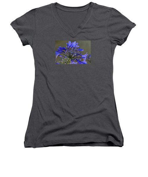 Spring Time Blues Women's V-Neck T-Shirt (Junior Cut) by Menachem Ganon