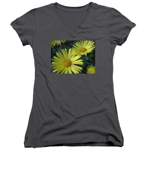 Spring Yellow  Women's V-Neck T-Shirt