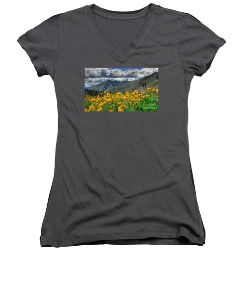 Springtime At Gallagher Women's V-Neck (Athletic Fit)