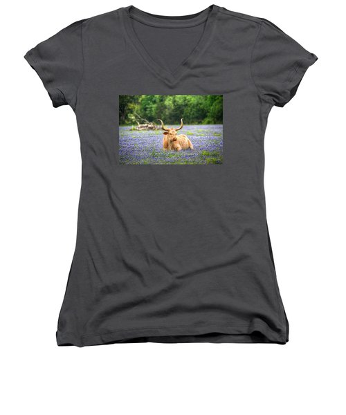 Springtime In Texas Women's V-Neck T-Shirt (Junior Cut) by Dave Files
