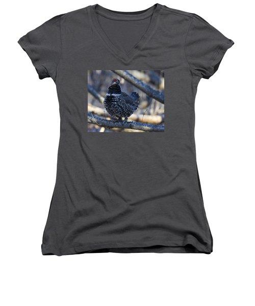 Spruce Hen Women's V-Neck T-Shirt