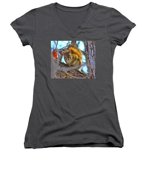 Squirrel Duty. Women's V-Neck T-Shirt (Junior Cut) by Johanna Bruwer
