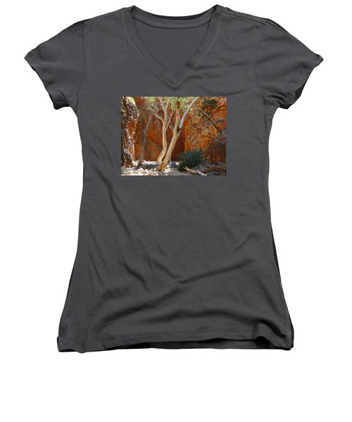 Standley Chasm Women's V-Neck T-Shirt (Junior Cut) by Evelyn Tambour