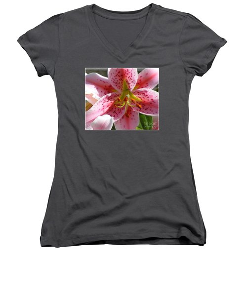 Stargazer Lily Women's V-Neck T-Shirt (Junior Cut) by Barbara Griffin