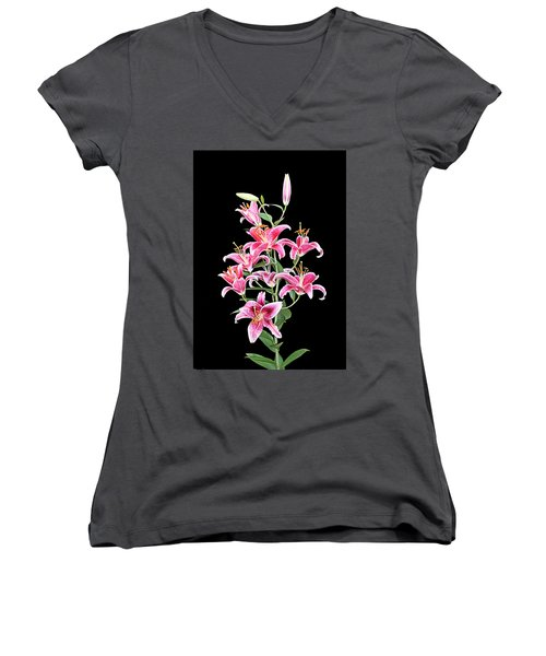 Stargazers Women's V-Neck T-Shirt (Junior Cut) by Kristin Elmquist