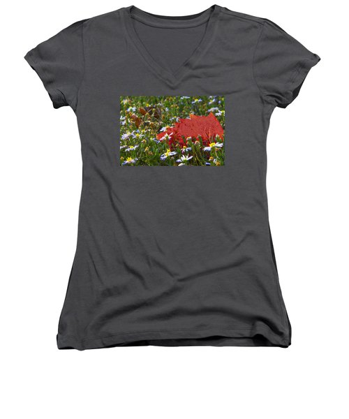 Women's V-Neck T-Shirt (Junior Cut) featuring the photograph Stocking Up For The Winter by Gary Holmes