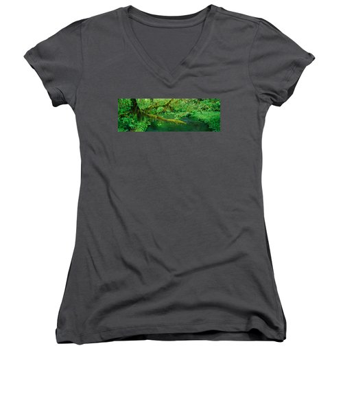 Stream Flowing Through A Rainforest Women's V-Neck T-Shirt (Junior Cut) by Panoramic Images