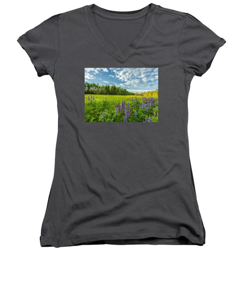 Women's V-Neck T-Shirt (Junior Cut) featuring the photograph Summer Dream by Rose-Maries Pictures