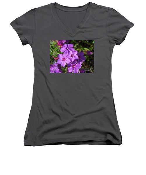 Women's V-Neck T-Shirt (Junior Cut) featuring the photograph Summer Purple Phlox by D Hackett