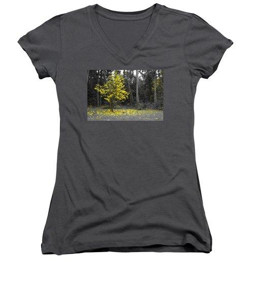 Summer's End Women's V-Neck T-Shirt