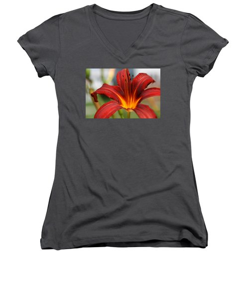 Women's V-Neck T-Shirt (Junior Cut) featuring the photograph Sunburst Lily by Neal Eslinger