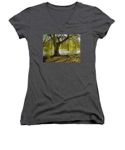 Sunday In The Park Women's V-Neck T-Shirt (Junior Cut) by Madeline Ellis