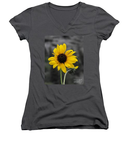 Women's V-Neck T-Shirt (Junior Cut) featuring the photograph Sunflower On Gray by Rebecca Margraf