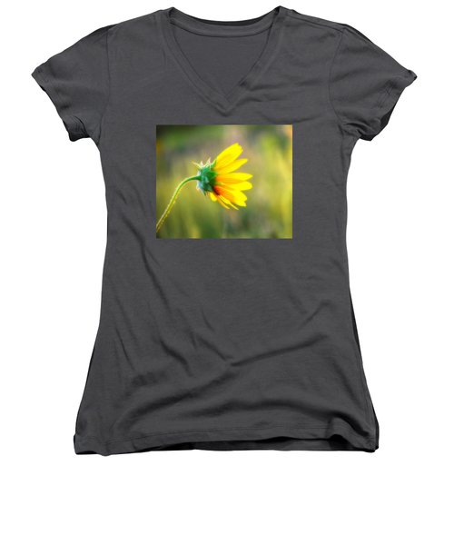 Sunflower Sunrise 6 Women's V-Neck T-Shirt