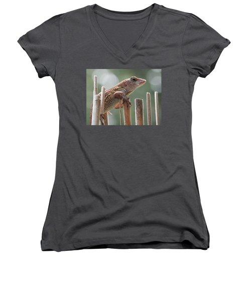 Sunning Lizard Women's V-Neck T-Shirt (Junior Cut) by Belinda Lee